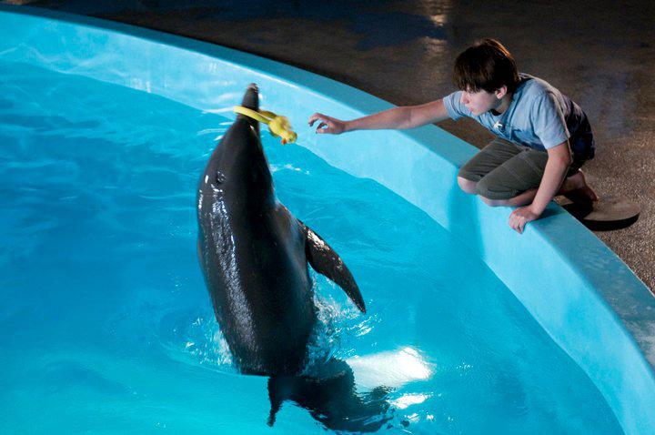 [電影介紹] 重返海豚灣 Dolphin Tale